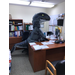 Beaufort staff memeber dressed up as a raptor